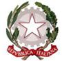 I.I.S. 'P.A. Fiocchi' logo